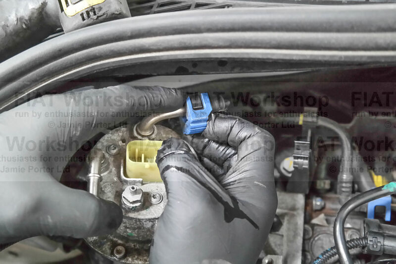 <p>Slide back the blue locking tab to the fuel filter inlet hose and disconnect the hose.